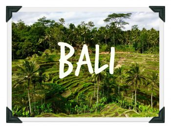 Bali RIZIERE
